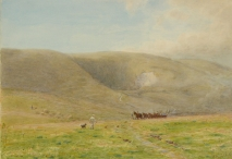 Scene on the Downs