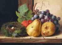 Still life, Fruit and a Nest of Eggs upon a Ledge