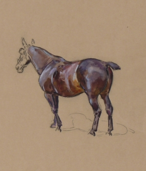 Study of a Horse, Peter Biegel