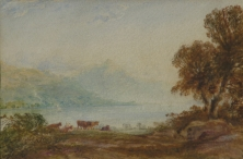 Cattle in a Lakeland Landscape