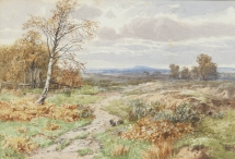 Rabbits on a Heath
