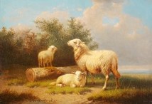 Sheep & Lambs by a Sawn Tree