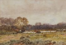 Cattle in a Field by a Lake