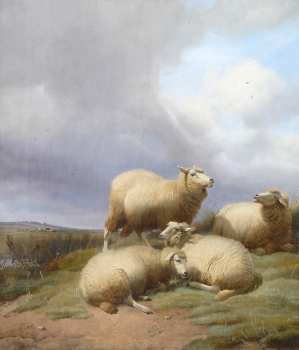 Sheep Resting on a Hillside , Thomas Sidney Cooper