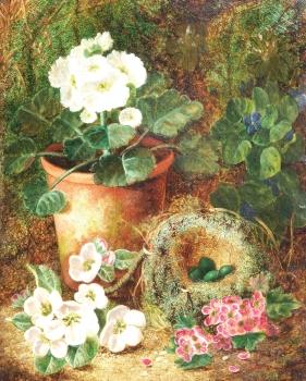 Still Life with Birdsnest & Blossom  , Oliver Clare