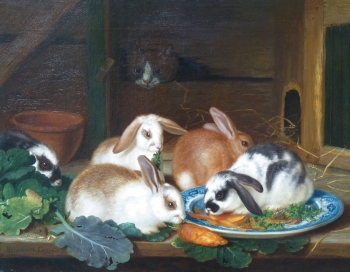 Pet Rabbits Feeding with a Cat Looking on, Horatio Henry Couldery