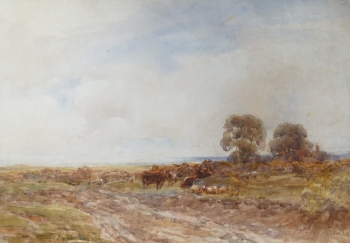 Cattle Grazing on Moorland, Claude Hayes