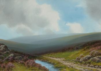 A Moorland Stream, R. D. Sherrin