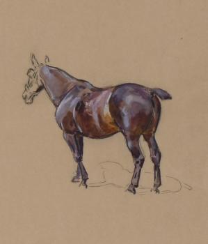 Study of a Horse, Peter Biegel