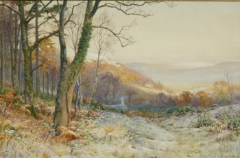 Hoar Frost above Trefriw North Wales, Walter Follen Bishop