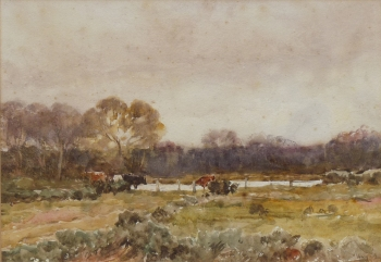 Cattle in a Field by a Lake, Claude Hayes