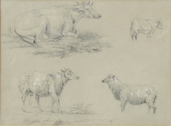 Cattle & Sheep Studies, Eugene Joseph Verboeckhoven