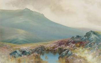 A Dartmoor Tor, R. D. Sherrin