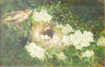 Chaffinch's Bower, William Hughes