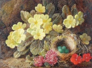 Still Life - Primroses & Nest, George Clare