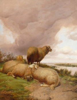 Sheep in Canterbury Meadows, Thomas Sidney Cooper