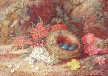 Still Life Bird's Nest & Flowers, Vincent Clare