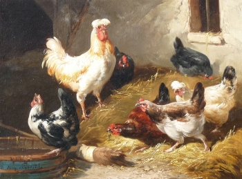 Chickens & Cockerel, Henry Schouten