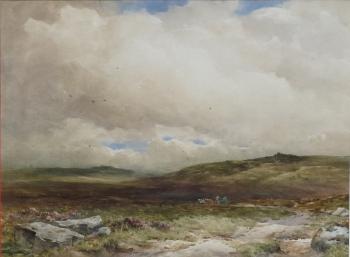 Taw Marsh, Dartmoor, Devon, Wycliffe Eggington