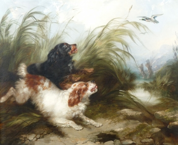 Spaniels Flushing Mallard, George Armfield