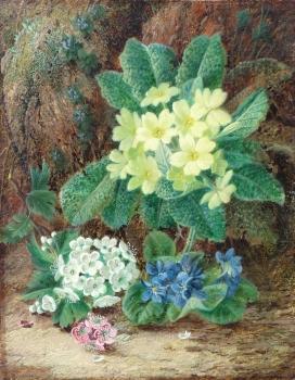 Primroses, Violets & Hellebores, Oliver Clare